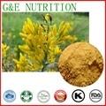 Genisteína Genista Extracto de alta Calidad 98% 300g