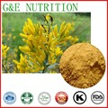 High Quality Genista Extract Genistein 98% 300g
