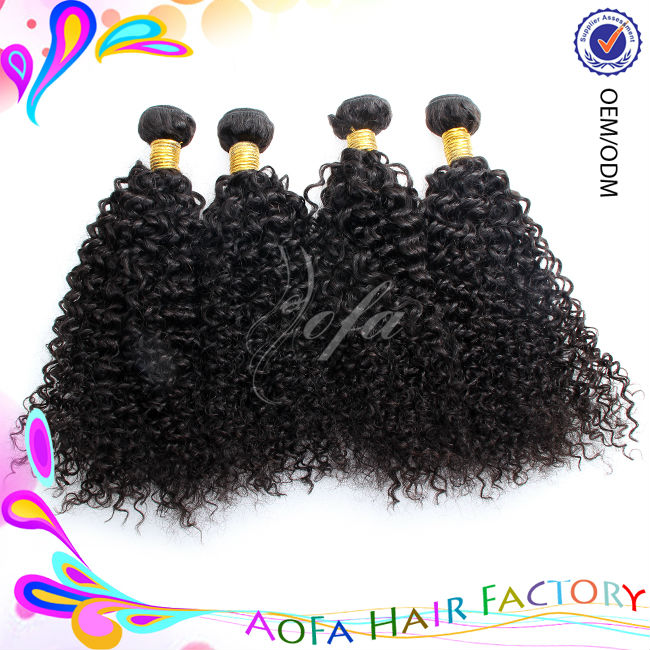 Best Quality Cheap Double Drawn Thick 100 Brazilian Kinky Curly