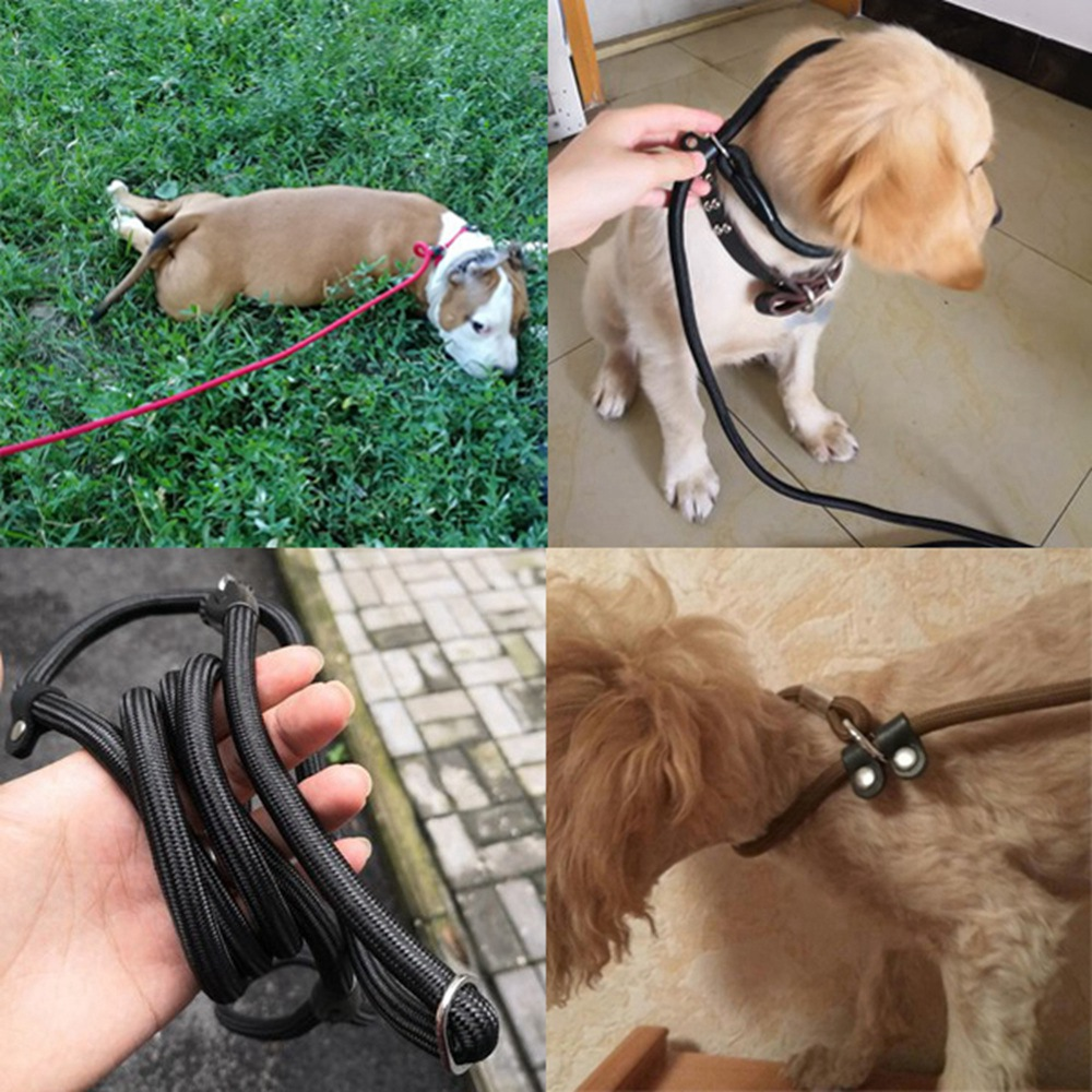 Dog Leash Rope Pet Products Puppy Leash Pet Dog Leashes For Small Medium Large Dogs Cat Pitbull Durable Dog Leash Collar Harness (16)