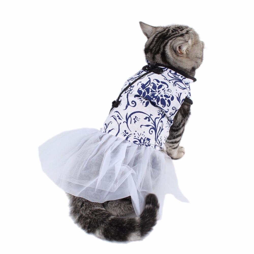 В прозрачных платьях без трусов такой