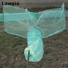 Lawaia Trap Lure Eel Floats For Fishing Net China Crab Trap Landing Net Fishing Network Fishing Network Sea Network For Fishing