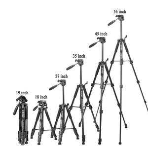 Image 5 - ใหม่Zomeiขาตั้งกล้องZ666 Professionalเดินทางแบบพกพาขาตั้งกล้องอลูมิเนียมอุปกรณ์เสริมขาตั้งหัวสำหรับCanon Dslrกล้อง