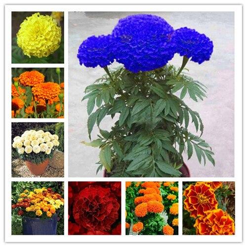 Purse Hook Foldable Vintage Chrysanthemum Branch Pattern Flowers Buds Folding Handbag Table Hanger-bag Hanger Collection-desk Hooks For Purse