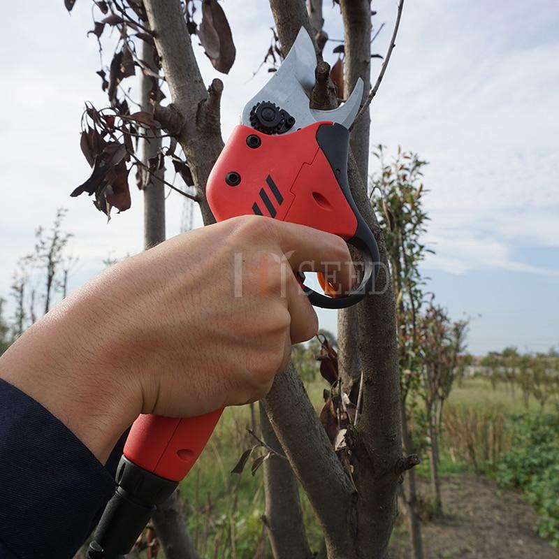 forbici per alberi da frutteto e da giardino (lama - Attrezzi da giardinaggio - Fotografia 4