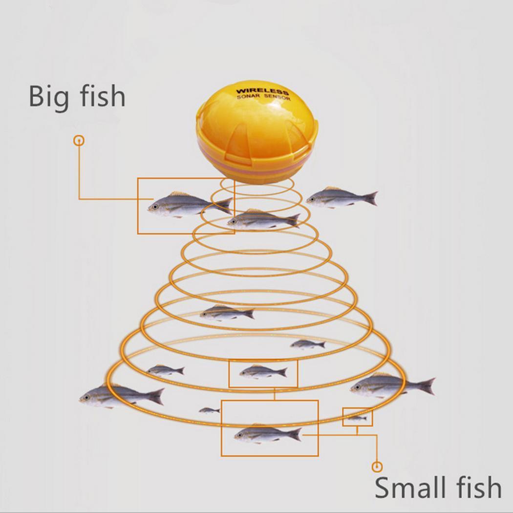 Isca de Pesca do Mar Verde Barco Livre Alimentação Partículas