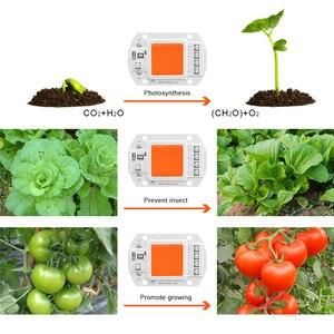 Image 5 - Lâmpada led de espectro completo para lâmpada phyto, microplaqueta, ac220v, 110v, 10w, 20w, 30w e 50w, para plantas em área interna, mudas, crescimento de flores e fitolamp