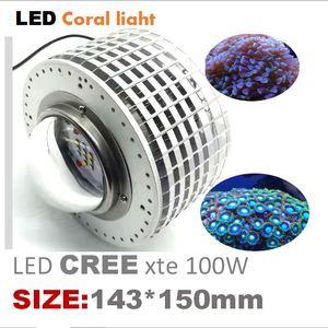 Image 1 - 100w cree led aquário luz marinha recife coral lâmpada do tanque de peixes para água salgada peixes marinhos de água doce pet iluminação cultivada