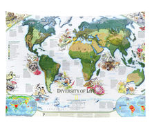 Cilected New World Map Tapestry Bedroom Decorative Polyester Fabric Wall Hanging Tapestry Watercolor Map For Wall Art Cover(China)