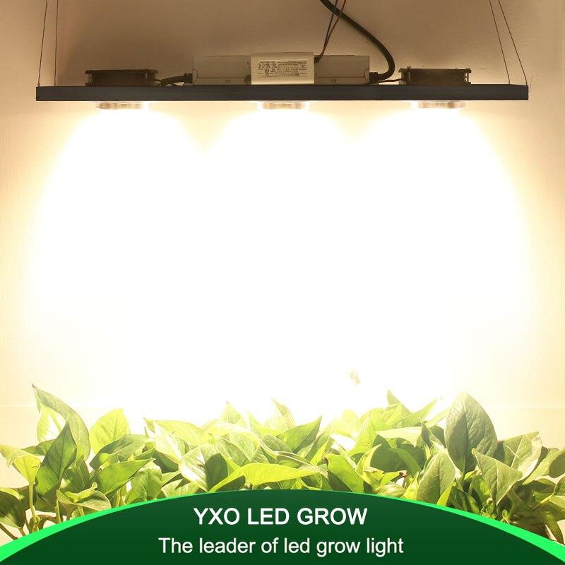CREE CXB3590 300 W COB Dimmable LED lampe de LED à spectre complet 38000LM = HPS 600 W lampe de croissance d'intérieur plante croissance éclairage