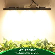 CREE CXB3590 300W COB dim LED büyümek ışık tam spektrumlu LED lamba 38000LM = HPS 600W büyüyen lamba kapalı bitki büyüme aydınlatma