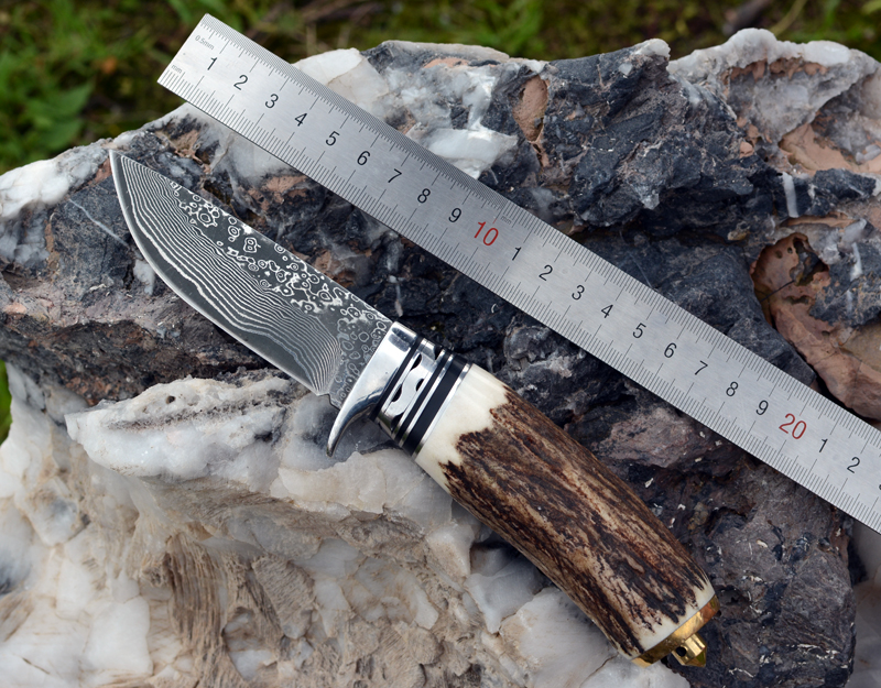 Voltron chasing antlers Damascus steel straight knife, collecting gifts outdoor camping multi-purpose knife