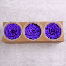 1 box High Quality Preserved Flowers Flower Immortal Rose 7CM diameter mothers day gift Eternal Life Flower Material gift box