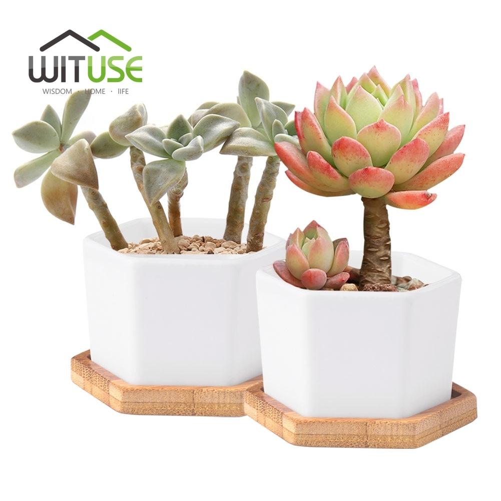 WITUSE 2pcs plantas suculentas maceta hexagonal de cerámica blanco - Productos de jardín