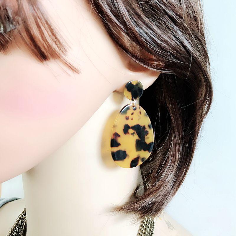 IMG_4482  Free Delivery New Design Tortoise Resin Style Elegant Earring HTB1emRMbmcqBKNjSZFgq6x kXXa5