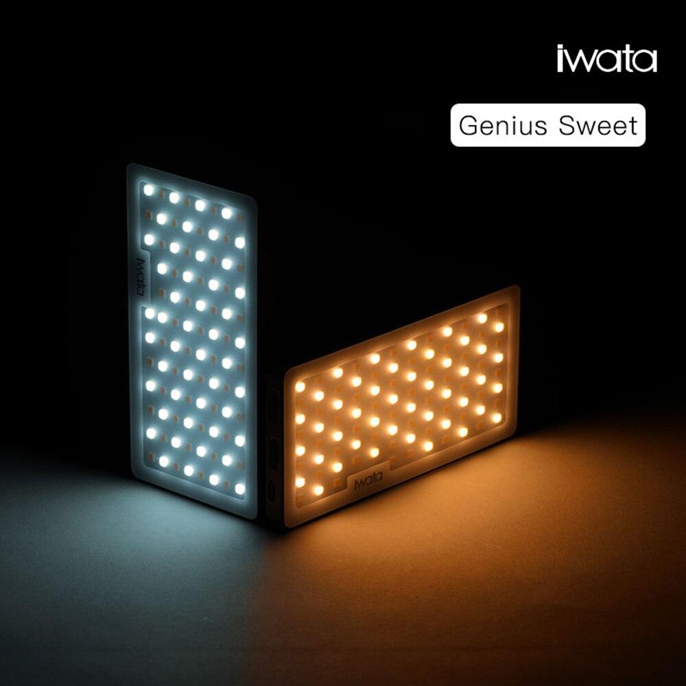 Iwata Mini 94 LED Vidéo Lumière Bi-Couleur Portable Remplir Lumière Sur Caméra LED Photographie Éclairage pour DSLR Canon nikon Pentax