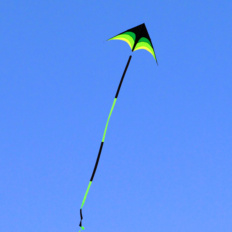 Купить с кэшбэком free shipping 10m big kite flying line ripstop nylon fabric outdoor toys cerf volant kite for adults kitesurf reel bag bird kite