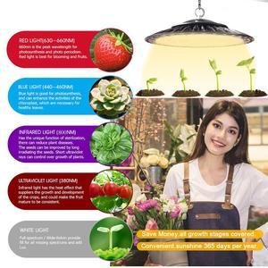 Image 5 - Plug in gratuito 380 780nm Luce Del Sole Led Coltiva La Luce a Spettro Completo Impermeabile Fiore Serra Piantina Fiore Verdure Pianta Box Tenda
