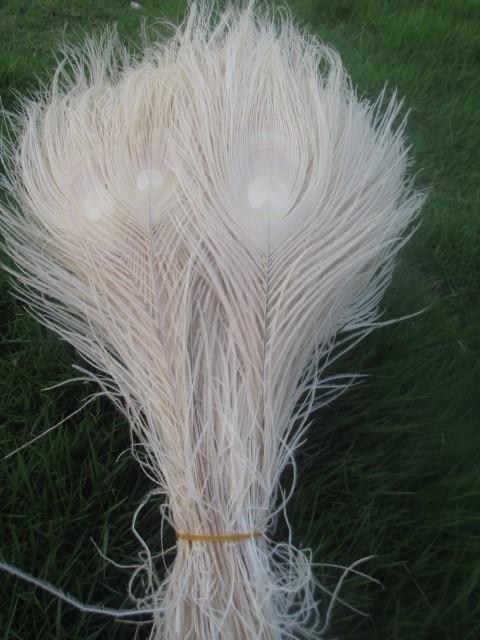 Wholesale! Beautiful White Peacock Eye Feathers 10 Pcs 25-30 Cm / 10-12 Inches Decoration Celebration