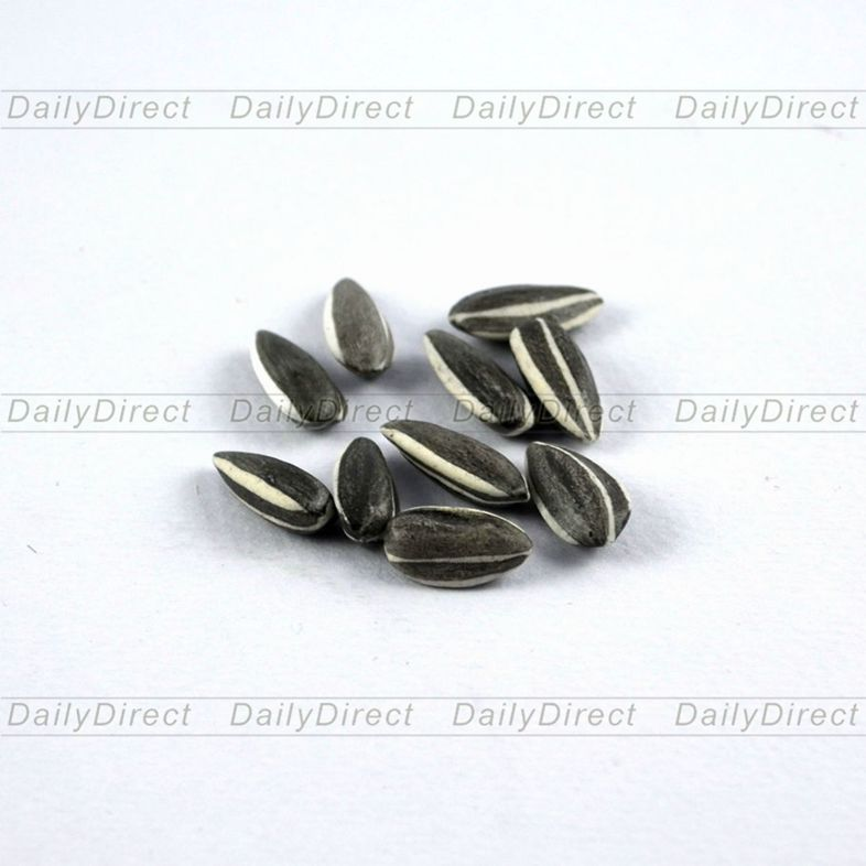 10 Pcs/lot Art * Ai Wei Wei * Porcelain Sunflower Seeds LONDON MODERN 2010 Home Decor Party Decoration