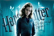 Custom Canvas Art Harry Potter Poster Harry Potter Wall Stickers Half Blood Prince Wallpaper Emma Watson Mural Home Decor #869#