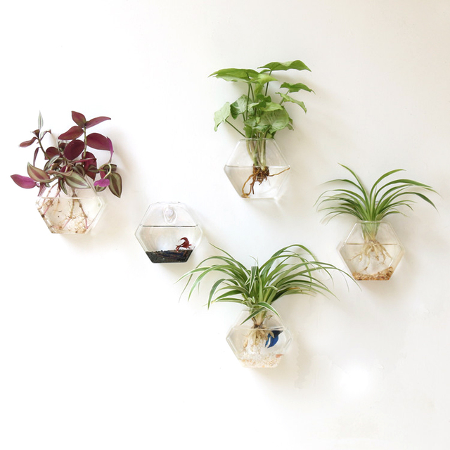 Small Plants For Home Part - 32: Mkono 2 Pcs Wall Mounted Glass Vase Wall Hanging Planter Plant Flower Pot Small  Plants Terrarium