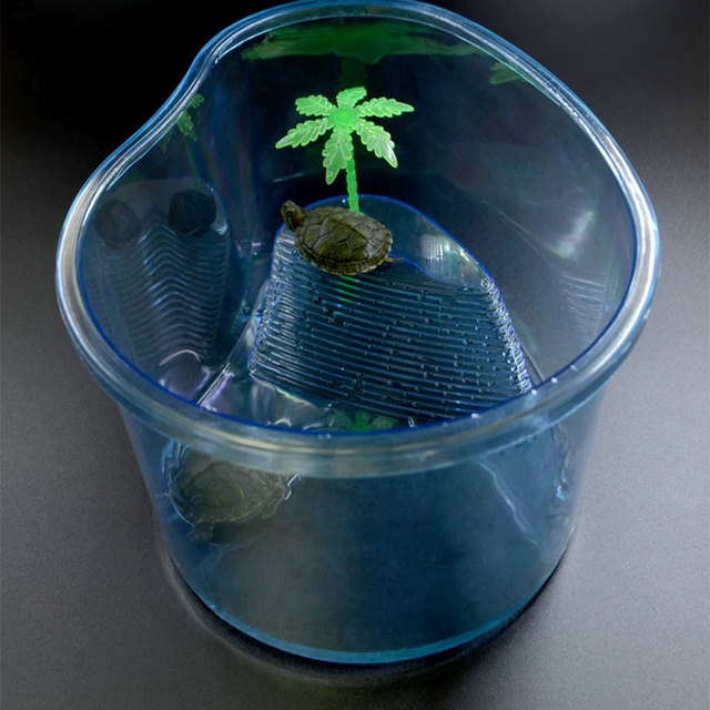 Terrarium for Turtle