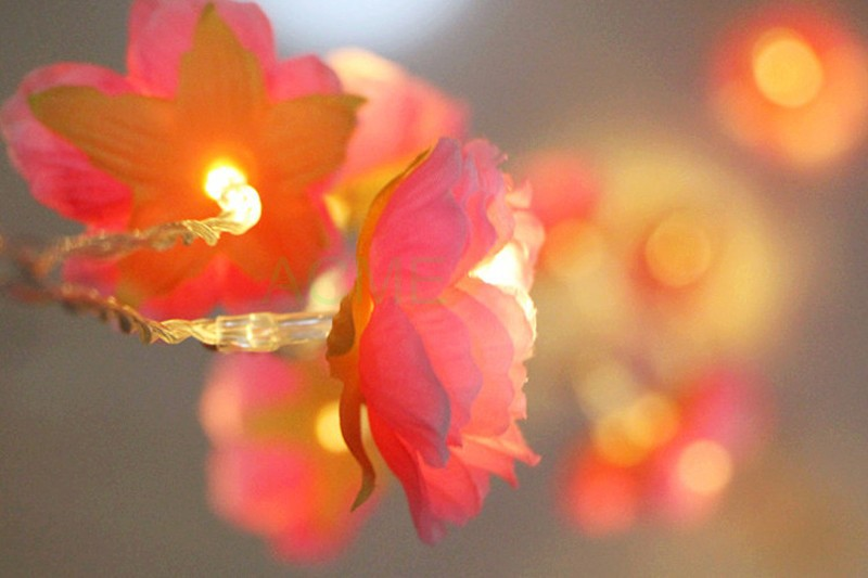 Silk Flower lights 9