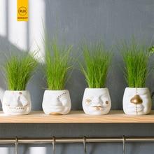 RUX WORKSHOP DIY Mini White Gold Face Shape Ceramic flower pot Desktop plant fleshy Potted decoration