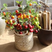 Artificial Flower Simulation Berry Fruit Bean Home Wedding Decoration Holding DIY Wall Fake Flowers