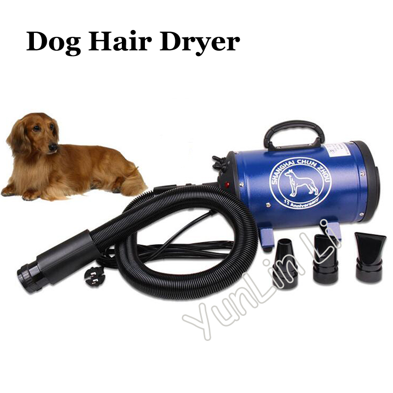 Dog Hair Dryer Electric Cat Hair Blowing Machine for Bath Low Noise Pet Hair Drying Machine Handheld High Power Hair Blower 1pc hot sale pet dryer dog hair dryer 2600w pet variable speed low noise dog blower blowing machine