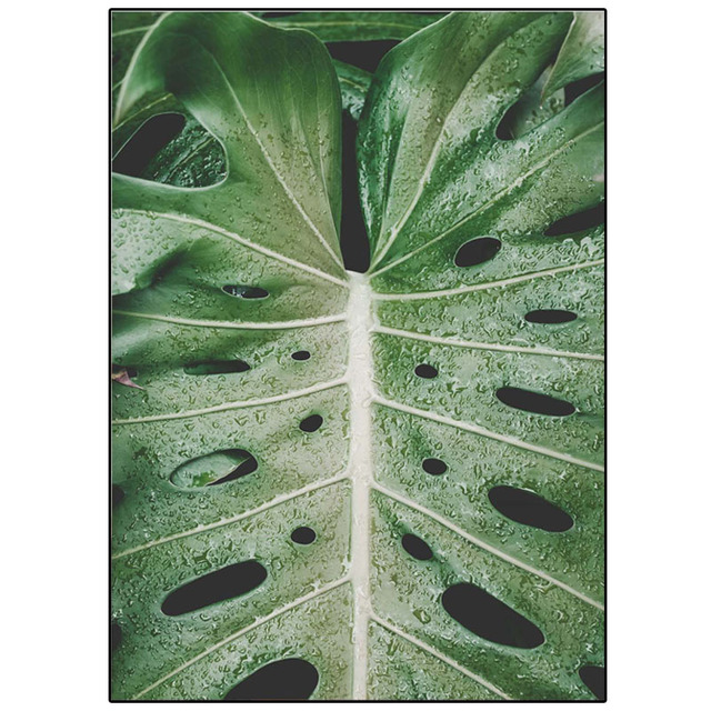 Fresh Green Big Leaves Print Canvas Painting Nordic Posters And