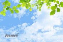 Ausgesetzt Deckenplatten Blauen Himmel Und Bume Decke Wohnzimmer Design