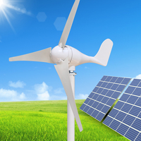 Wind solar hybrid system 100w wind generator popular for export sales