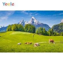 Yeele landscape Mountain Vitality Animal Leisurely Photography Backdrops Personalized Photographic Backgrounds For Photo Studio