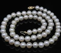 noble women gift GOLD CLASP HHUGE natural White GW 9 9.5MM white AAA+ Akoya pearls necklaces
