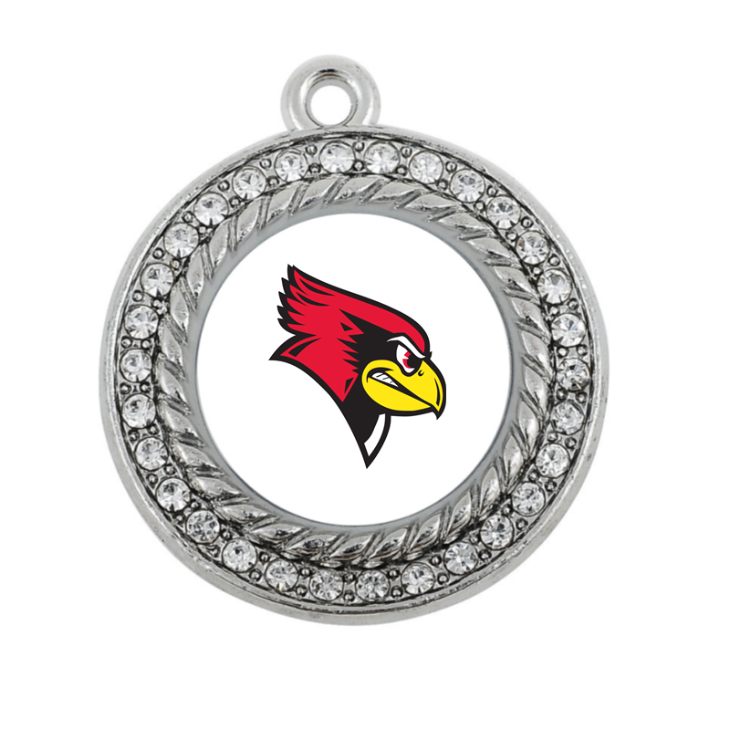 Illinois State Redbirds CHARM ANTIQUE SILVER PLATED JEWELRY ...