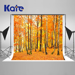 Sale Kate  10x10ft Autumn Nuture Background Photography Fallen Leaves Back Drops For Photography  Romantic Wedding Photo Background
