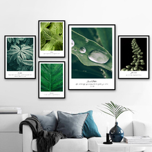 Green leaves Tropical Plant Wall Art Canvas Painting Nordic Posters And Prints Canvas Art Wall Pictures For Living Room Decor соколова т н школа развития речи 1 кл рабочая тетрадь в 2 х частях