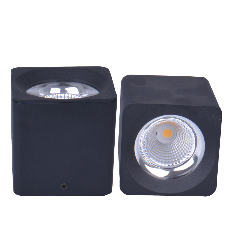 20w Led Surface Mounted: 20pcs/lot 10W 20W 30W 40W Surface Mounted LED Downlights