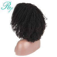 Mongolian Afro kinky Curly Wig Glueless Full Lace Human Hair Wigs With Baby Hair Pre Plucked Natural Hairline Riya Remy Hair