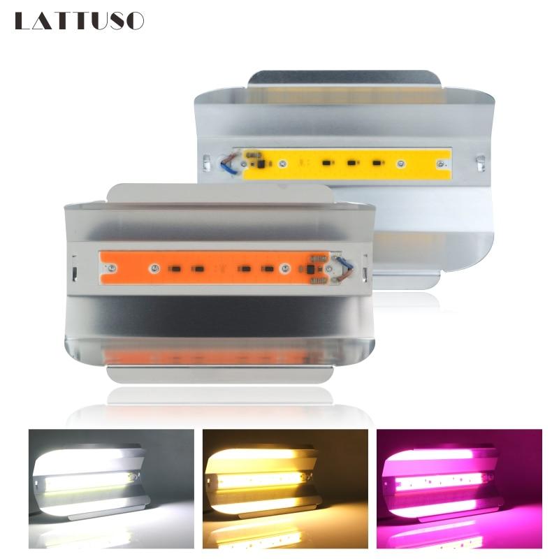 Éclairage LED 30 W 50 W 80 W éclairage extérieur AC 220 V Spot plein spectre IP67 LED étanche COB Spot lampe murale