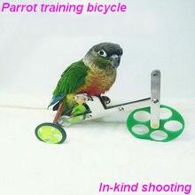 Обучающая игрушка для попугаев, принадлежности для попугаев, оборудование для попугаев