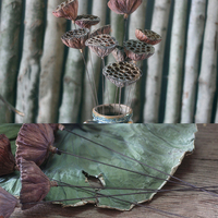 2 Pieces Lotus Pod With Iron Wire As Rod Handmade Natural Plant Combination Art Flower Arrangement