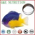 400g Top grad De Colágeno de Peixes/peixe proteína colágeno/peptídeo Pó com frete grátis