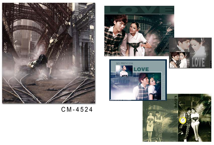 200*300 cm fond de mariage photographie personnalisé décors en vinyle pour studio numérique imprimé accessoires photo de mariage