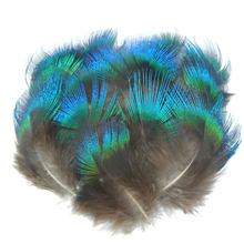 Natural Iridescent Blue Peacock Feathers for Crafts 3-5cm/1-2  Jewelry Making Christmas Costume Plumas Plumage Carnival Plumes
