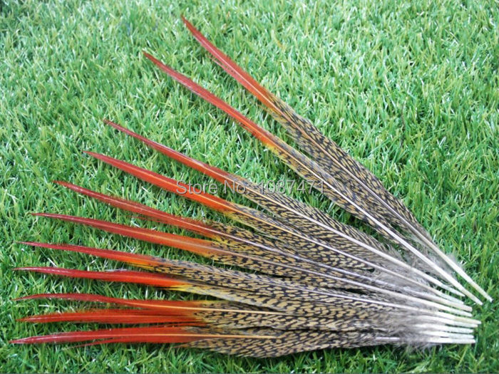 50pcs 20-25cm  8-10inch natural red pheasant feathers for jewelry clothing accessories craft making bulk sale