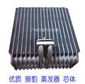 Automotive air conditioning evaporator FOR  cheetah, V31, V32, V33, V43, V45,Pajero, 4Y Auto ac Repair Parts