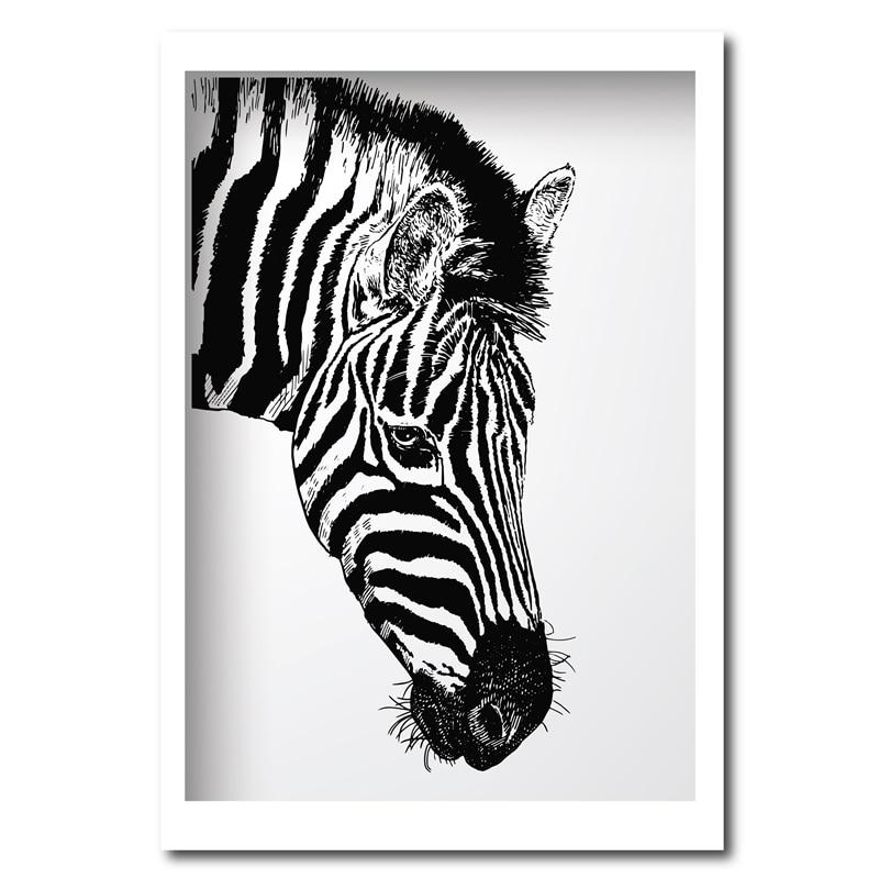 Niedlich Zebrabilderrahmen Bilder - Rahmen Ideen - markjohnsonshow.info